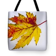Changing Autumn Leaf In The Snow Tote Bag