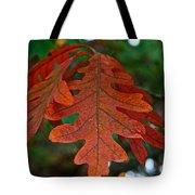 Changing Oak Tote Bag