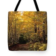 Changing Trees Tote Bag