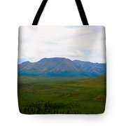 Chapters Of Earth Tote Bag
