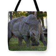 Charging Rhino. Tote Bag