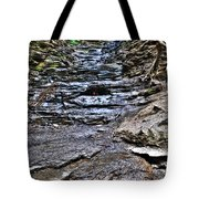 Chasing The Eternal Flame At Chestnut Ridge Park Tote Bag