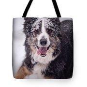 Chasing The Snow Tote Bag by Joye Ardyn Durham