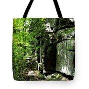 Chatfield Rock Face Tote Bag