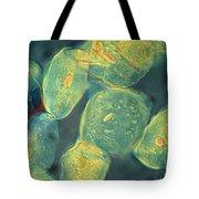 Cheek Cells Tote Bag