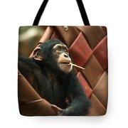 Cheeky Chimp Tote Bag