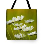 Cheerful Daisy Wildflowers Blowing In The Wind Tote Bag