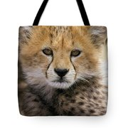 Cheetah Acinonyx Jubatus Ten To Twelve Tote Bag