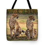 Cheetah Chat 1 Tote Bag