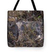 Cheetah Kitten Tote Bag
