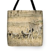Cheetah Mother And Cubs Tote Bag