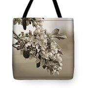 Cherry Blossoms Sepia Tote Bag