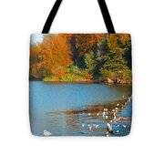 Chester In Autumn Tote Bag