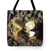 Chestnut Flower Tote Bag