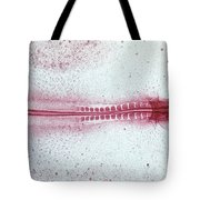 Chick Development 512 Tote Bag by Science Source
