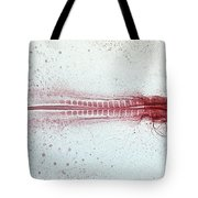 Chick Development 612 Tote Bag by Science Source
