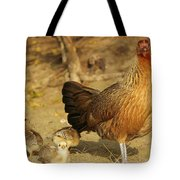 Chicken And Chicks Tote Bag