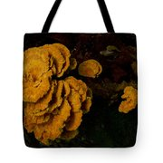Chicken Of Woods 1 Tote Bag