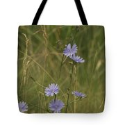 Chicory 2765 Tote Bag