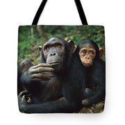 Chimpanzee Adult Female With Orphan Baby Tote Bag