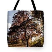 Chinbrook Meadows Tote Bag