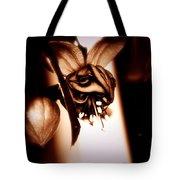 Chocolate Silk Fuchsia II Tote Bag