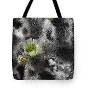 Cholla Blossoms Tote Bag