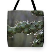 Cholla Cactus In The Rain Tote Bag