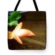Christmas Cactus 'beach Dancer' Tote Bag