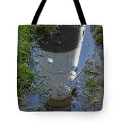 Christmas Range Light Reflection 1 Tote Bag