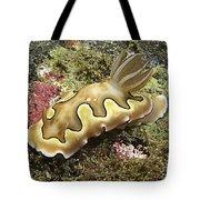 Chromodoris Coi Beige Nudibranch Tote Bag