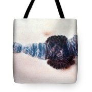 Chromosome Replication Tote Bag by Science Source