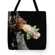 Cicada - First In Series Tote Bag