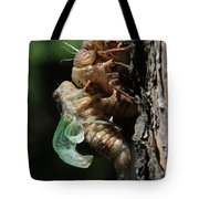 Cicada - Third In Series Tote Bag