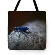 Cicindellidae A Family Of Preditors Tote Bag