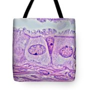 Ciliated Epithelium, Phase Microscopy Tote Bag