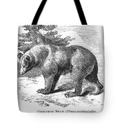 Cinnamon Bear Tote Bag