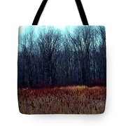 Cinnamon Fields Tote Bag