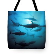 Circling Bluefin Tuna Tote Bag