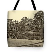 City Park Lagoon Sepia Tote Bag
