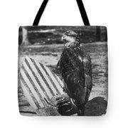 Civil War: Eagle Mascot Tote Bag