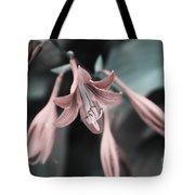 Cladis 23 Tote Bag