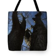 Clash Of Titans Tote Bag