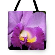 Classic Purple Orchid Tote Bag