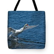 Clean Landing Tote Bag