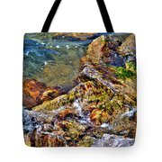 Clear Contact Tote Bag