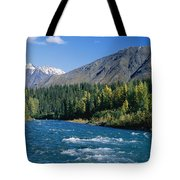 Clear Flowing Honolulu Creek And Fall Tote Bag