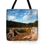 Clear Lake Oregon Tote Bag