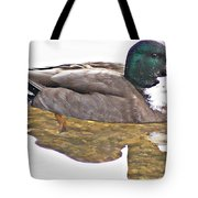 Clear Reflection Tote Bag