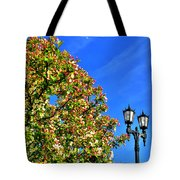 Clear Skies Tote Bag